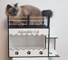 Casuta pentru pisici