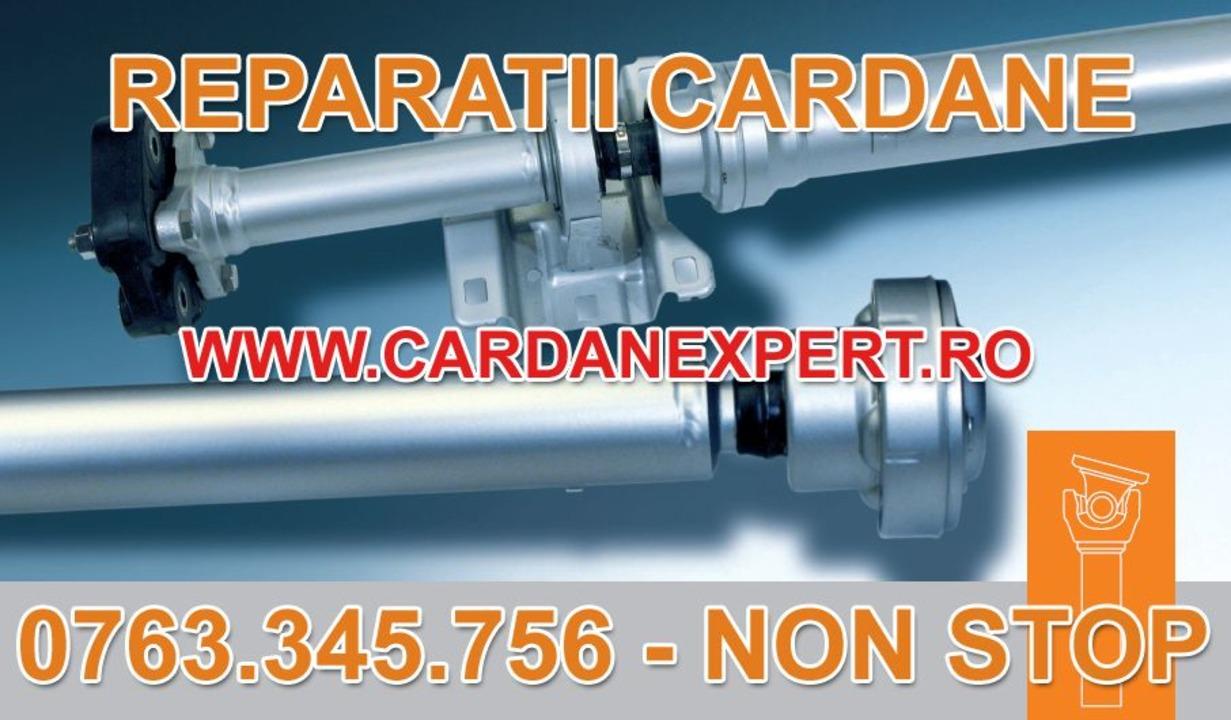 Reparatie Cardan SCANIA 6X4