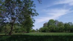 Particular - Teren la 9 km depărtare de Mănăstirea Sâmbăta de Sus.