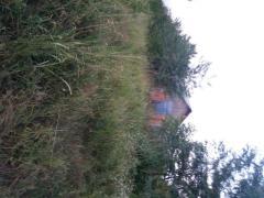 Vand casa cu teren 1000 m2 an mariuta