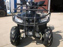 Atv Nitro T-Rex 125cc Cutie Automata #Negru