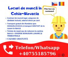Angajam muncitori  necalificați in Cehia