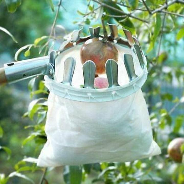 Dispozitiv fără coada, culegător pentru fructe livada