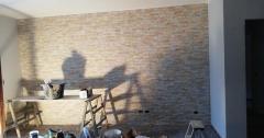 Constructii Profesionale
