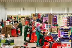 Angajam muncitori la depozit fructe in Germania