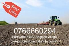 Sell agricultural land Hagiesti