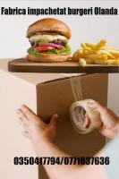 Fabrica impachetat burgeri Olanda