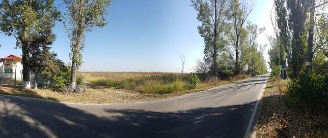 teren Silistea Snagovului