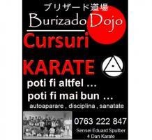cursuri Karate