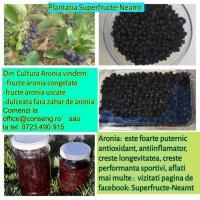 Vand fructe de Aronia