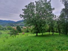 Teren de Vanzare Valea Doftanei