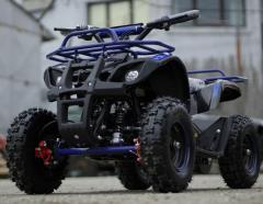 ATV electric pentru copii Eco Torino 800W  36V Deluxe
