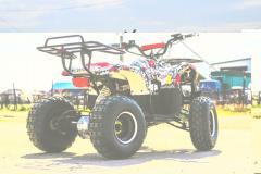 ATV electric Eco Toronto 1000W 48V DIFERENTIAL GRAFITI #Alb