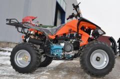 Atv 150Cc Akp Carbon Speedy Deluxe