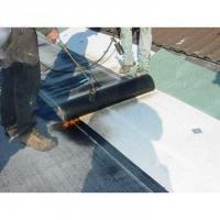 Acoperisuri dulgerie reparati terase izolați polester construcții