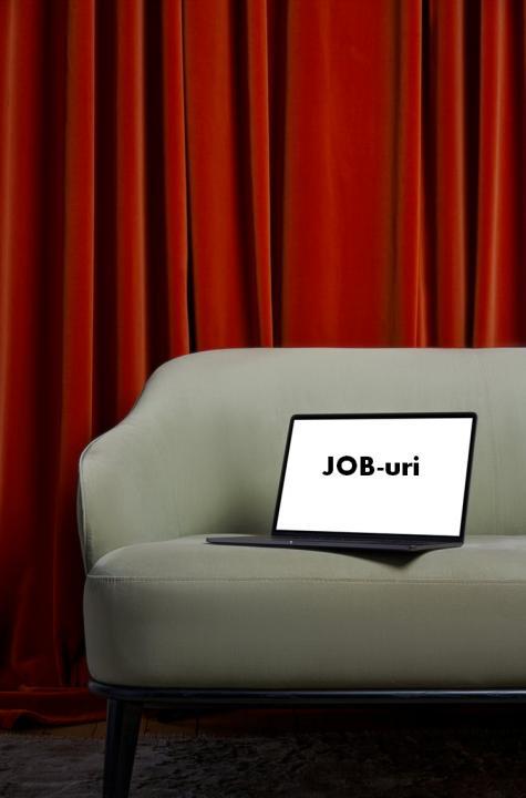Job-uri diverse