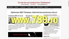 Pagini de internet, web design și SEO
