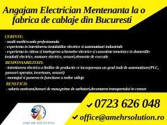 Electrician mentenanta