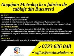 Metrolog