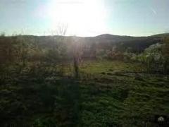 Teren in Bălcești Vâlcea