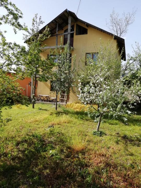 Casa cu teren, sat Burias, com Peris