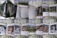 Renoir Album de Arta RARITATE