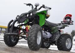 ATV NITRO AKP WARRIOR  M10, 2021,  AUTOMAT