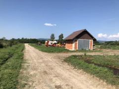 Lichidator judiciar vand ferma bovine - Satu Mare