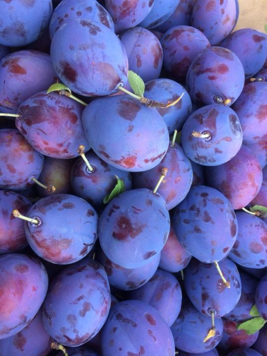 prune consum 2021
