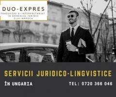 Asistenta juridica si lingvistica in Ungaria