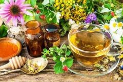 sera de plante medicinale italia