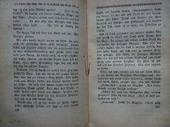 Der Hirt von Zenoberg,Roman, Greinz Rudolf ,1922