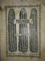 Porumbul Dr. D. Andronescu , Bucuresti , 1933
