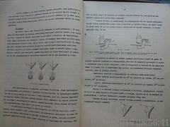 Curs radiologie stomatologica , Dr. Mihai Radulescu , 1980