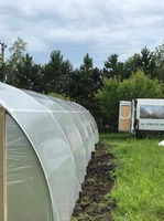 Solarii de gradina, sera, pentru legume si flori 6 m lungimex4 m lat