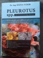 Pastrav de fag sau Pleurotus