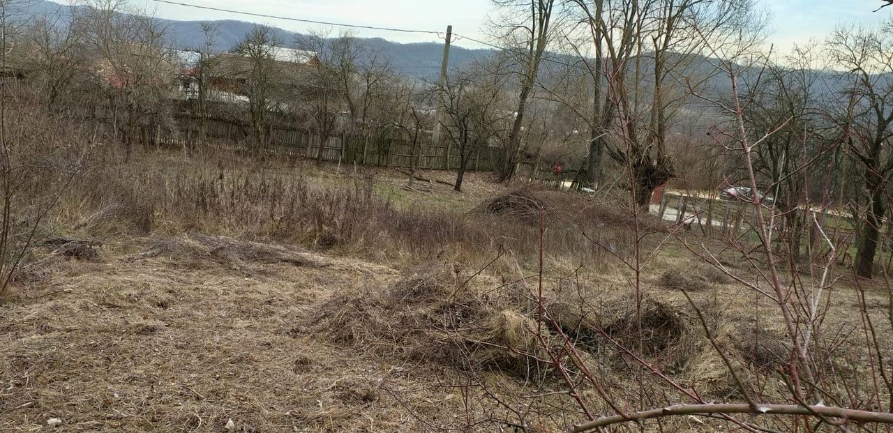 Teren intravilan comuna N.Balcescu, Valea Balceasca