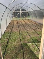 Sera de gradina pentru legume si flori, 8X4 m