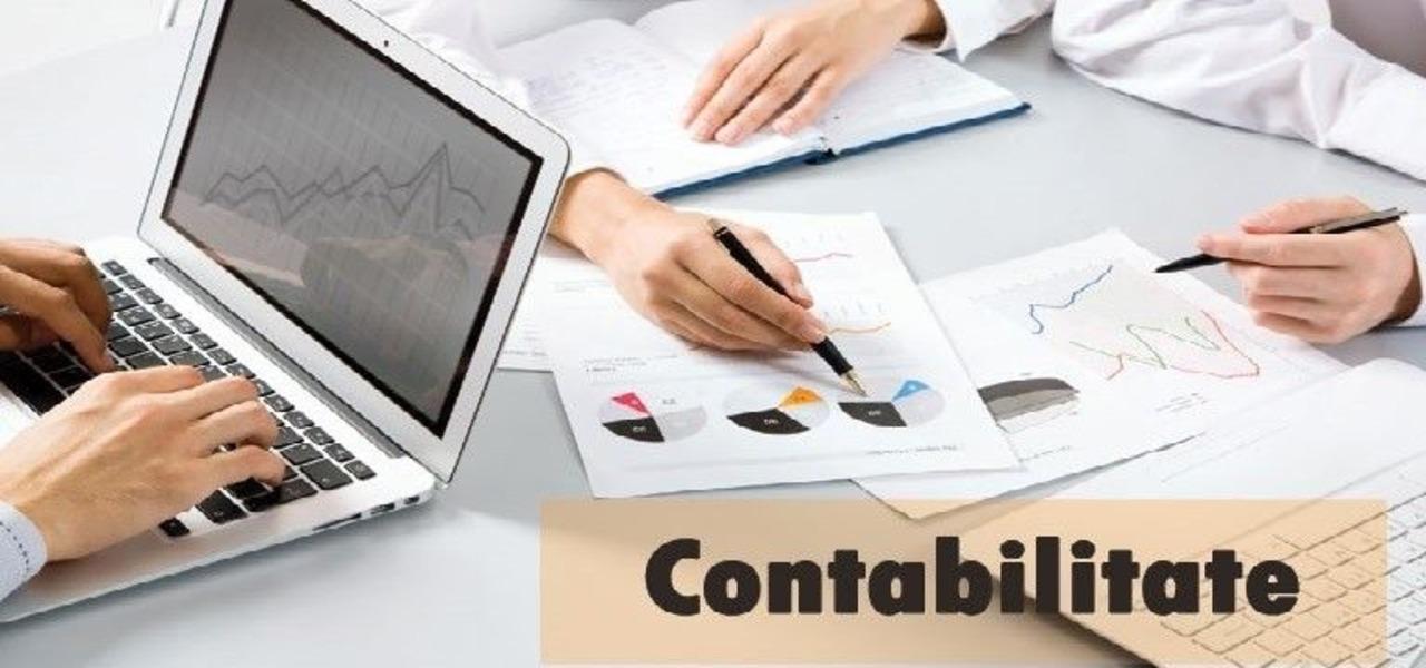 Contabilitate SRL ONG PFA II Bilant 2019 , declaratie unica 2020