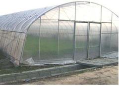 Sera profesionala pentru legume si flori 20 mX6 m