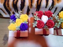 Trandafirii de sapun