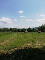 Proprietar vand 1079 mp teren intravilan, in Tropinii Noi, jud Sibiu;
