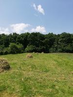 Tropinii Noi, 1079 mp teren intravilan, intabulat jud Sibiu;