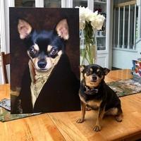 Canvas Personalizat Pentru Animale de Companie