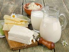 fabrica de lactate germania