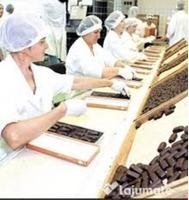 Fabrica Ciocolata Germania