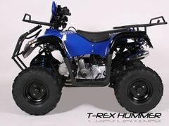 ATV Model:Bmw NOU!  Motor Fiabil 125cc (Roti 7 inch)
