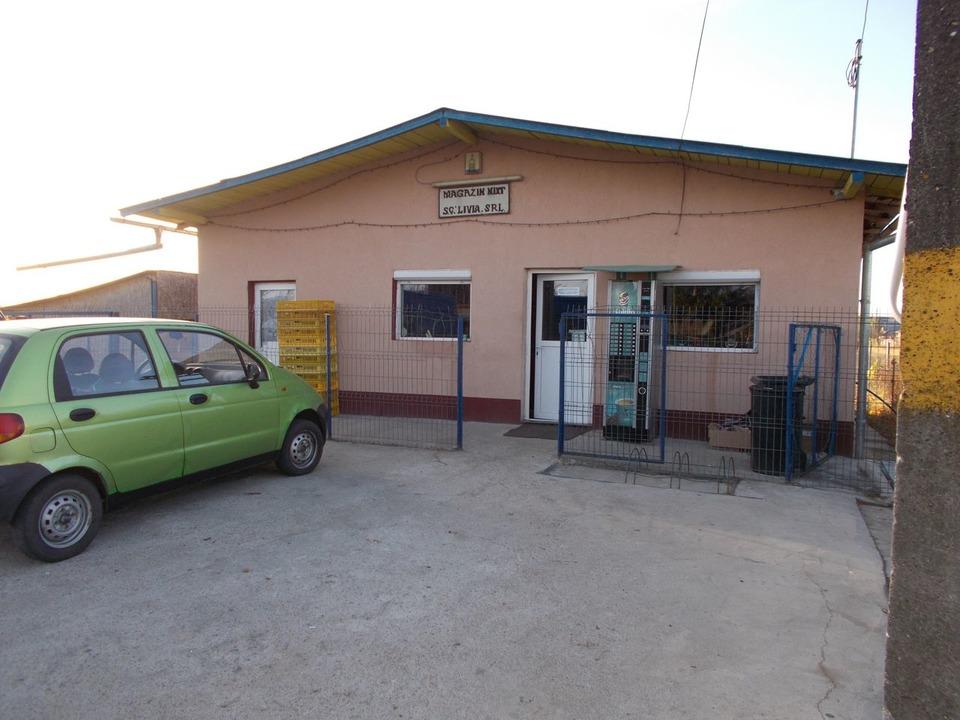 Spatiu comercial 120 mp - 6 km pana la autostrada pitesti-bucuresti